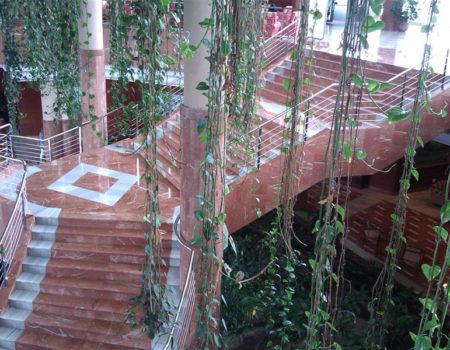 Escalera de Hotel en Playa de La Arena